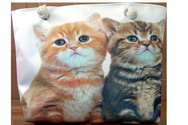 Kedi Çanta